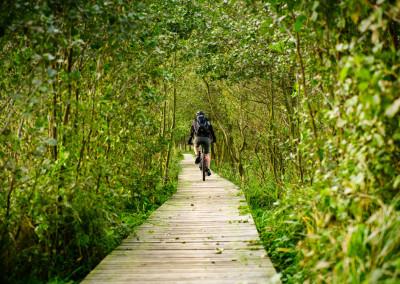 Ostseeküsten Radtour (1)