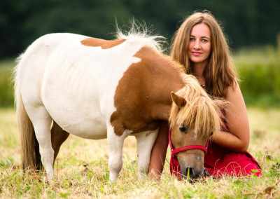 Pferde (6)